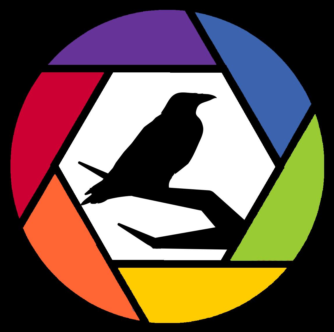 Post Producción Publicitaria con Adobe Premiere