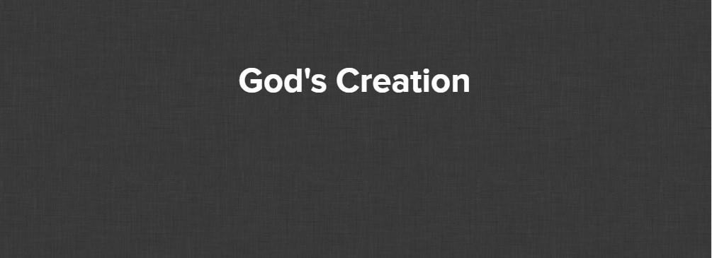 Gods Creations – Miquel Roman