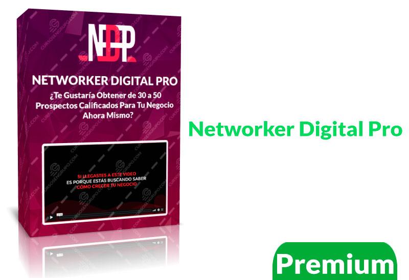 Networker Digital Pro